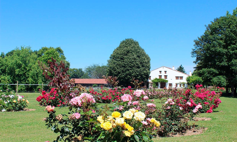 Espacios de bodas repletos de flores en los que siempre es primavera