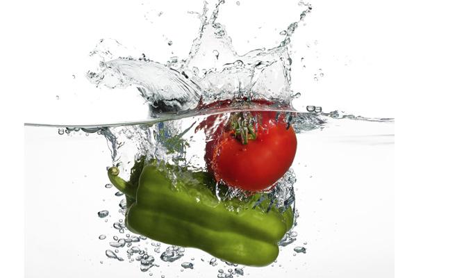 bacterias mas comunes en los alimentos