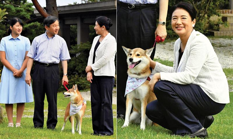 Masako de Japón, la cuenta atrás de la futura emperatriz