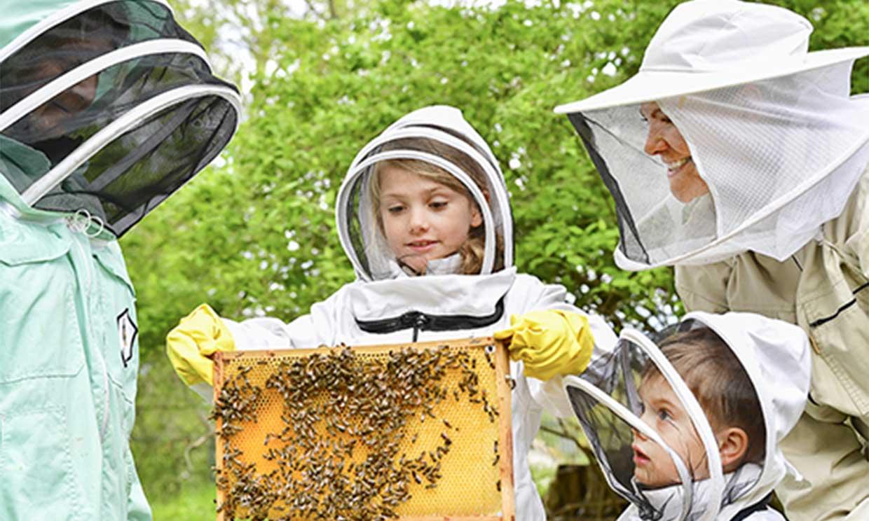 ¡Sin miedo a nada! Estelle y Oscar de Suecia se atreven con la apicultura