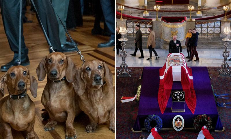 También sus mascotas se despiden de Henrik de Dinamarca