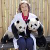 La reina Sofía testigo directo de los primeros pasos al aire libre de los 'ositos' panda nacidos en Madrid