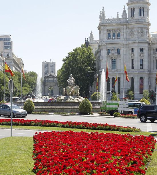 Madrid amanece entre flores y banderas para vivir la proclamación de Felipe VI