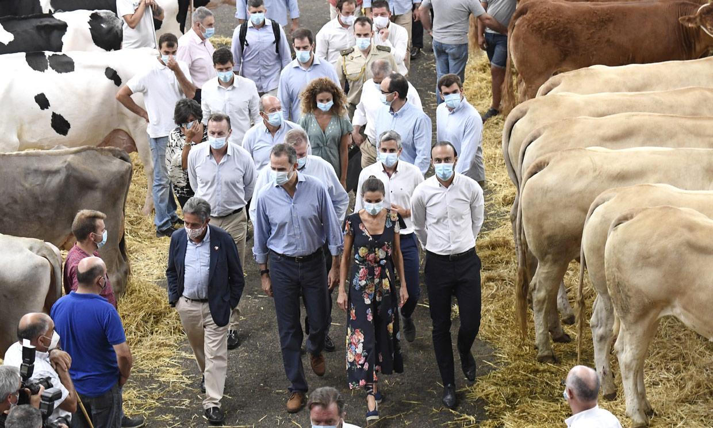 Los Reyes visitan Cantabria: del Mercado de Ganado de Torrelavega a la villa marinera de Santoña