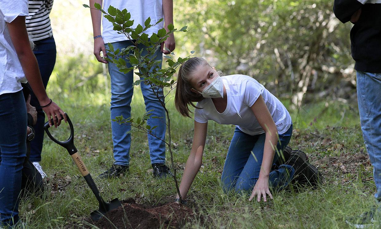 Así ha sido el momento en el que Leonor y Sofía han plantado un árbol por el planeta