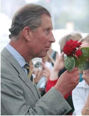 Al príncipe de Gales le han ofrecido un nuevo trabajo: Presidente de la nación checa