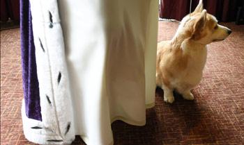 La reina Isabel II renuncia a seguir criando perros Corgi, sus mascotas favoritas desde hace 70 años, por miedo a tropezarse