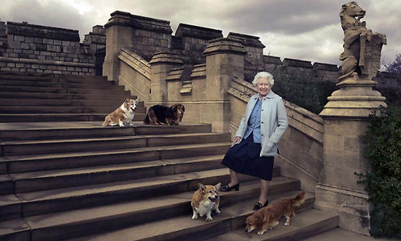Isabel II pierde a uno de sus compañeros más fieles, su mascota 'Holly'