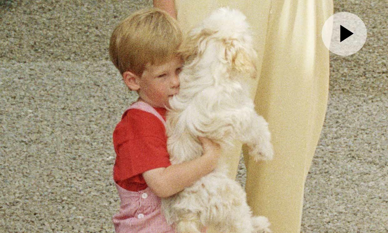 Así de adorable era el príncipe Harry cuando estuvo en España, ¿veremos a su bebé en nuestro país?