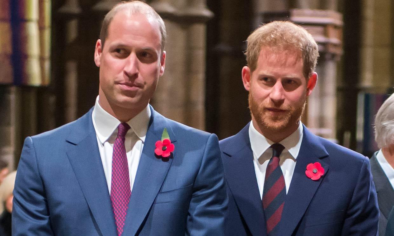 Los príncipes Guillermo y Harry, unidos para saber la verdad de la entrevista de su madre en la BBC