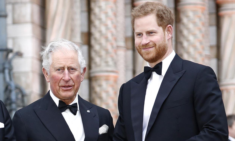 El proyecto con el que el príncipe Carlos hace la competencia a su hijo Harry