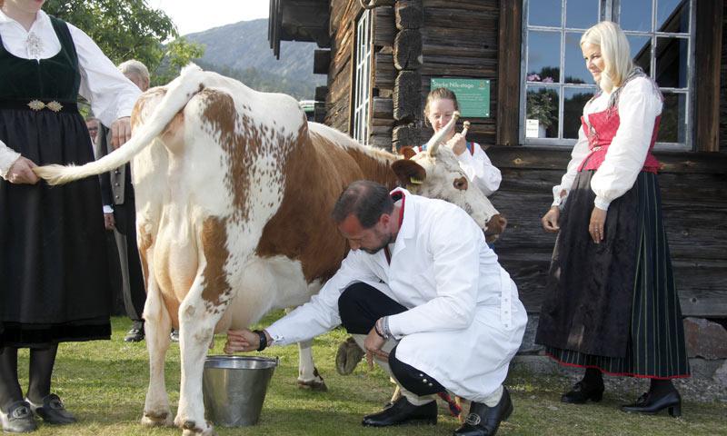 ¿Unos príncipes ordeñando una vaca? Mette-Marit y Haakon de Noruega demuestran que es posible