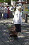 Enfermedades reumáticas en las personas mayores