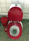 Diarreas no infecciosas