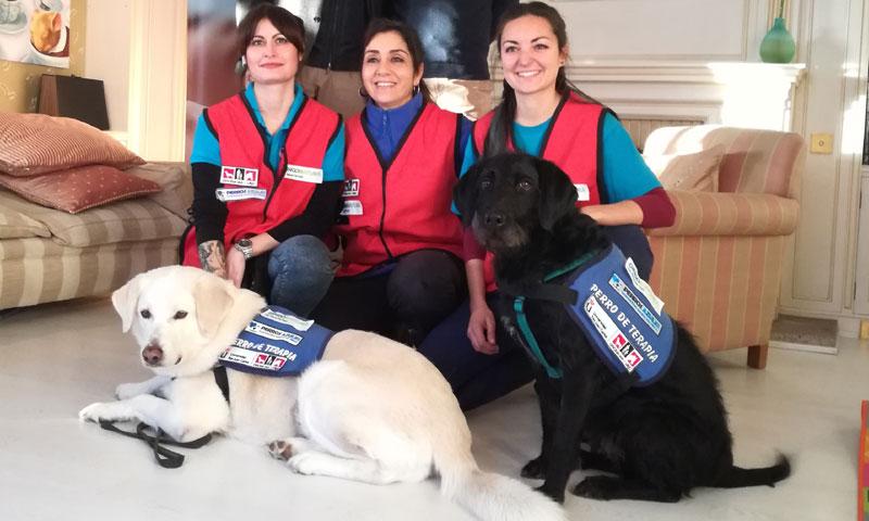 'Un perro, un niño feliz', la terapia con perros que busca ayudar a niños con diversas enfermedades