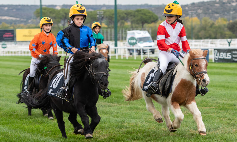 Calambritos, ganador del Premio Halloween en el Campeonato Ponyturf