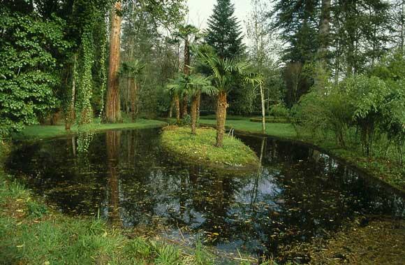 Los jardines m s recoletos disfr talos en oto o foto 5 for Jardines en otono