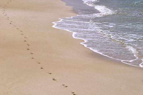 Fuerteventura, playas para disfrutar en invierno