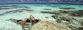 Busca perlas negras bajo las aguas de Tahití