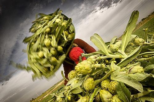 Tudela exalta las verduras