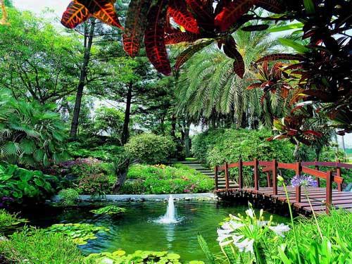 Los jardines de hotel m s espectaculares del mundo foto 1 for Los mejores jardines de casas