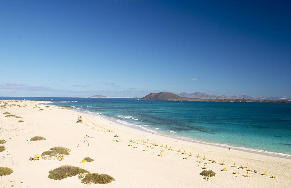 En Canarias 161 Ya Es Primavera