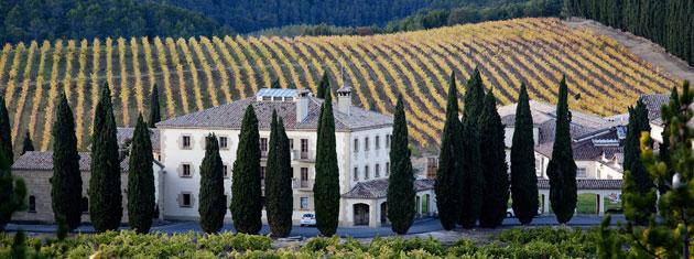 Verano de vino en Navarra