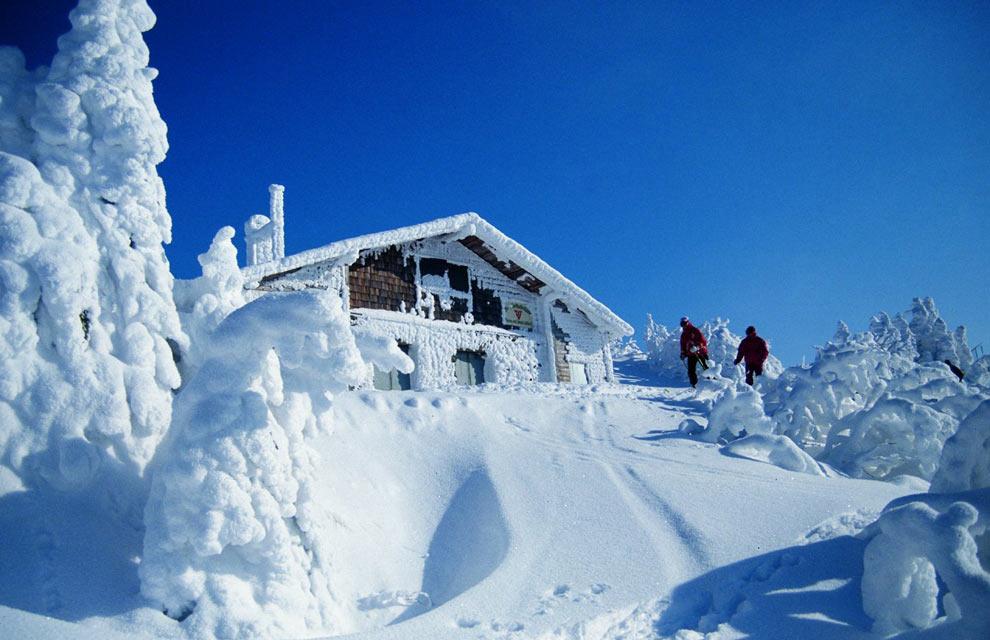 Image gallery montana 39 s paisajes con nieve - Paisaje nevado navidad ...