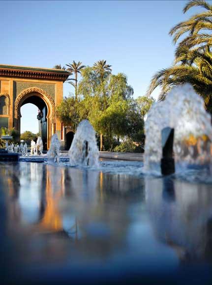 Relájate en Marrakech entre un mar de palmeras