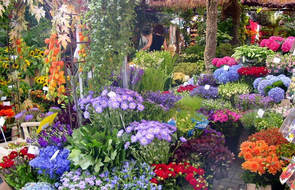 Una postal de primavera desde holanda for Florida v jardines