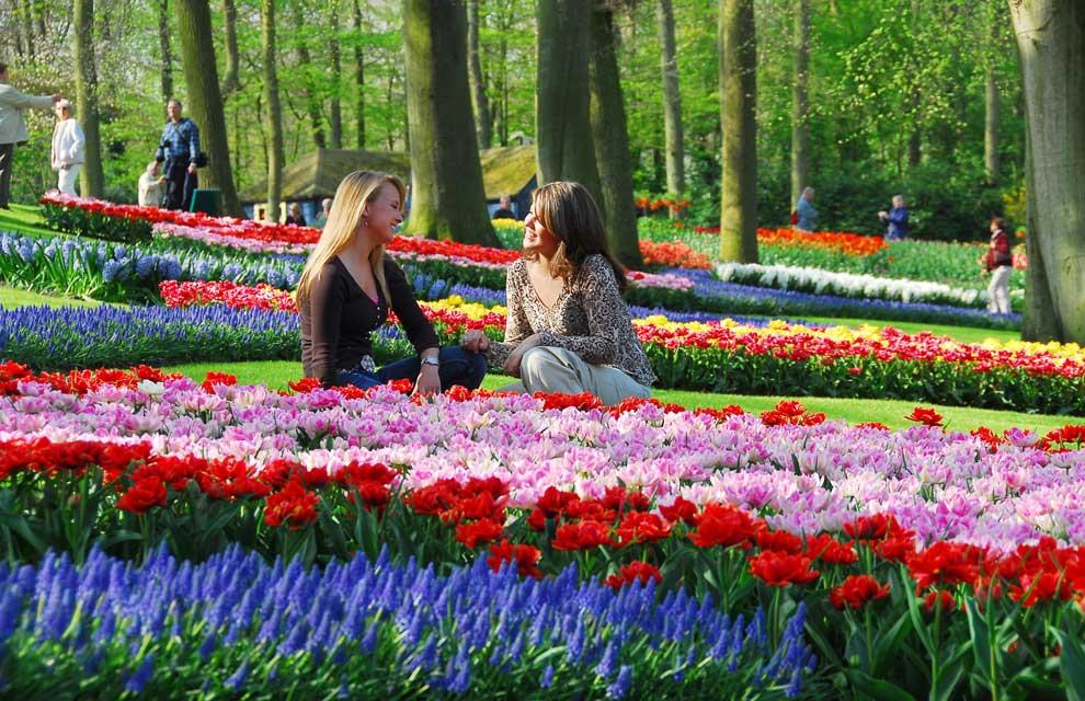 Una postal de primavera desde holanda - Jardines de tulipanes en holanda ...