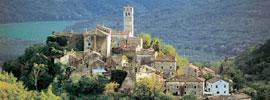Otoño trufero en Istria