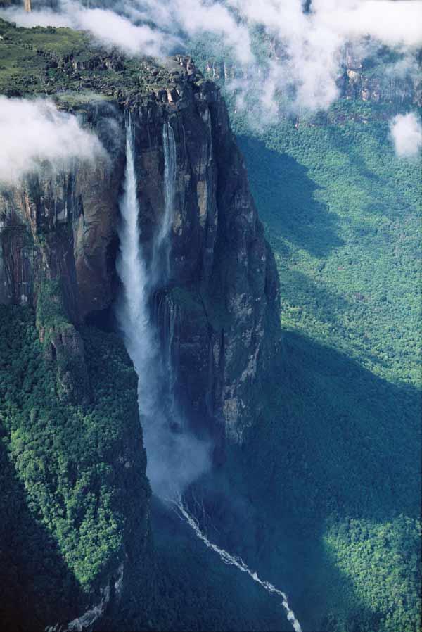 Un trocito del paraíso de la selva venezolana