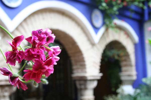 Los patios cordobeses, Patrimonio de la Humanidad