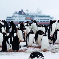 Acampar en las tierras heladas de la Antártida no es un sueño
