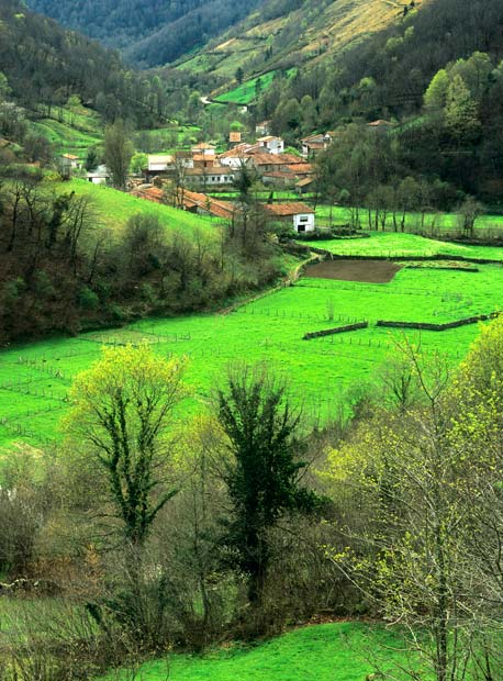 Bárcena Mayor Cantabria