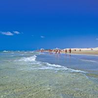 Aquí hay playa (y desierto), Maspalomas para este otoño