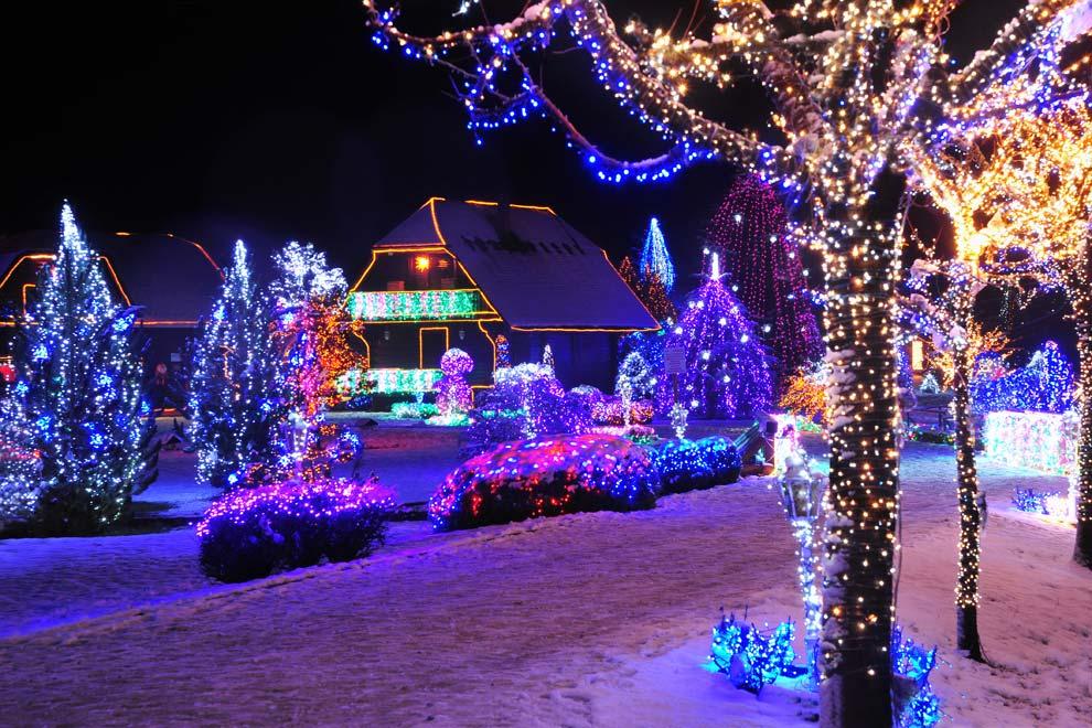 arboles de navidad exteriores