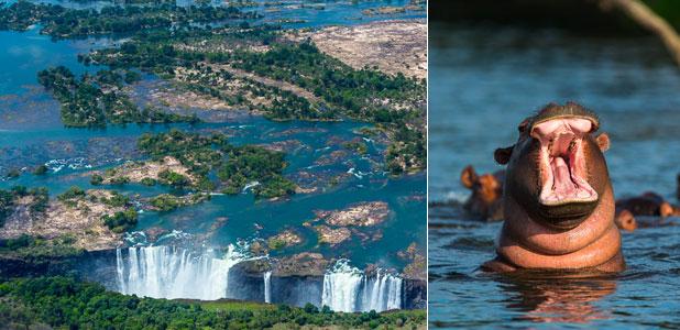 Tres aventuras ecoturísticas en Zambia, la llamada de África