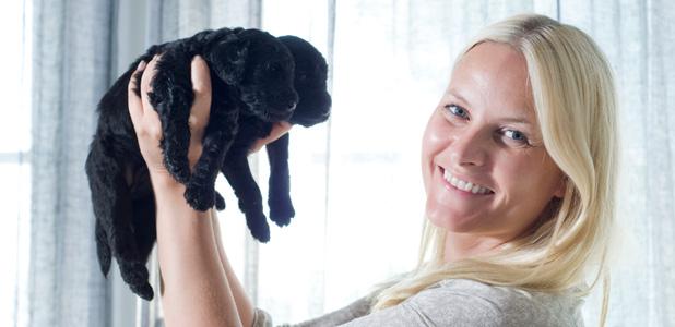 Pistas para seguir a la princesa Mette Marit por Oslo