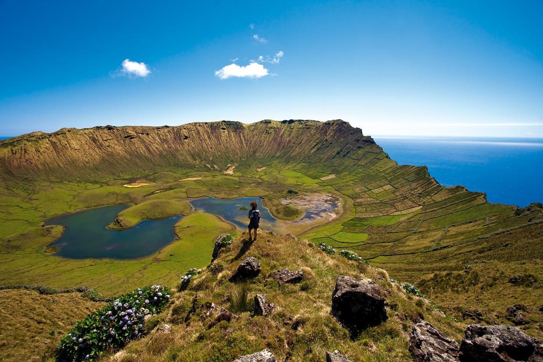 Azores un buc lico archipi lago para amantes de la - Banarse con delfines portugal ...