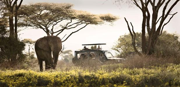 Un rincón del mundo donde perderte este verano... Serengeti