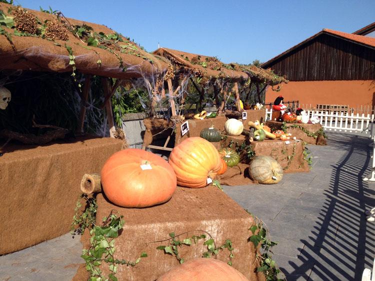 Cuatro propuestas viajeras de Halloween a precios estupendos
