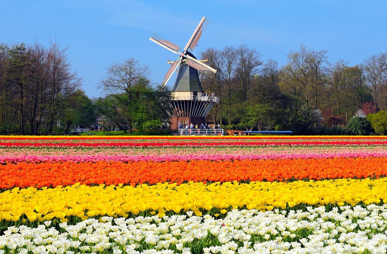 Top 10 de lugares m s coloridos para estrenar la primavera - Jardines de holanda ...