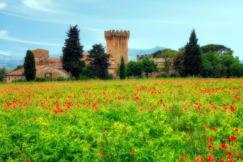 Top 10 de lugares m s coloridos para estrenar la primavera for Jardines en primavera fotos