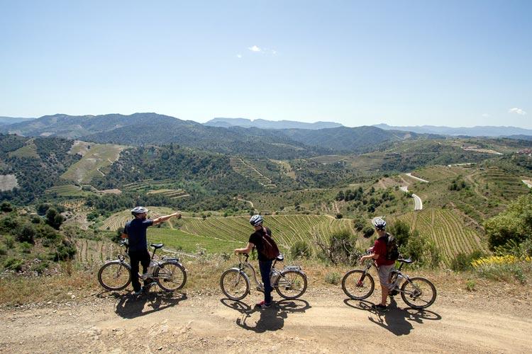 En bici (eléctrica) por el Priorat, para un 'wine tour' por la Costa Daurada en familia