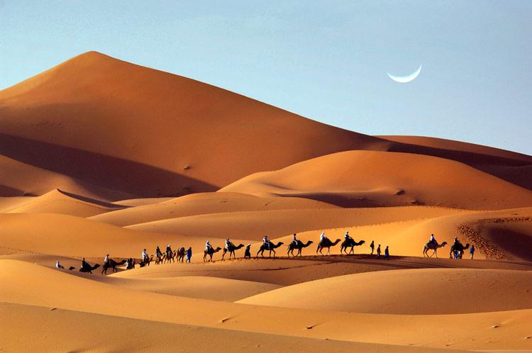 ¿Pasarías una noche bajo las estrellas en las dunas del Sáhara?