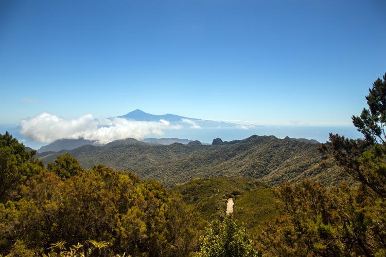 Cinco planes para vivir en La Gomera un sueño mágico