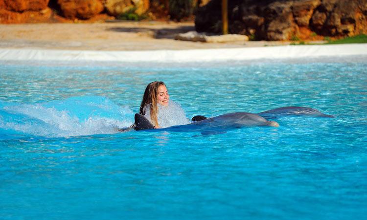Fin de semana de chicas en un para so cercano foto - Banarse con delfines portugal ...