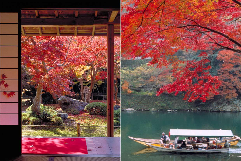 Japón, para salir volando ya